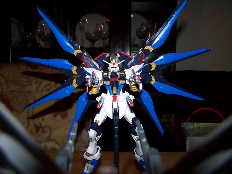 The Gundam Thread 100_0931