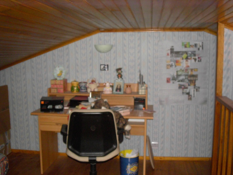 Une chambre mansardée comme un jardin (photo p.1 et 7) Mezza_10