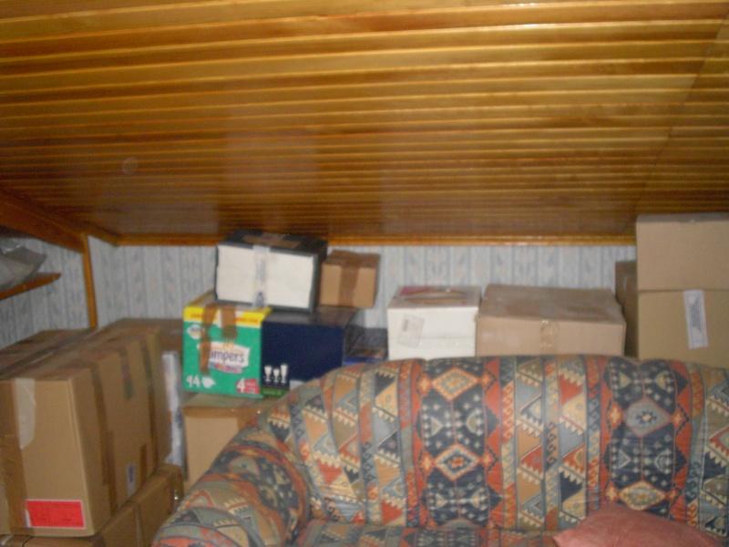 Une chambre mansardée comme un jardin (photo p.1 et 7) Mezza_11