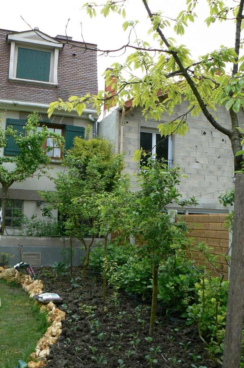 jardin potager P1140012