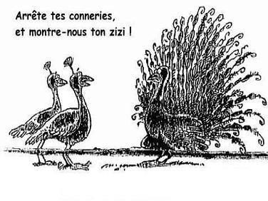 Humour noir - Page 7 T-le_p10