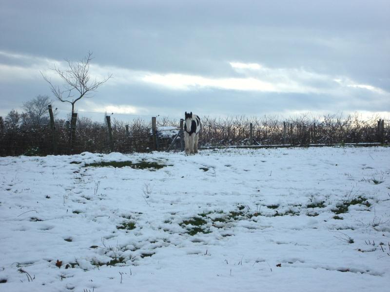 Premières neiges pour Léo! photos pg 3 01-12-13