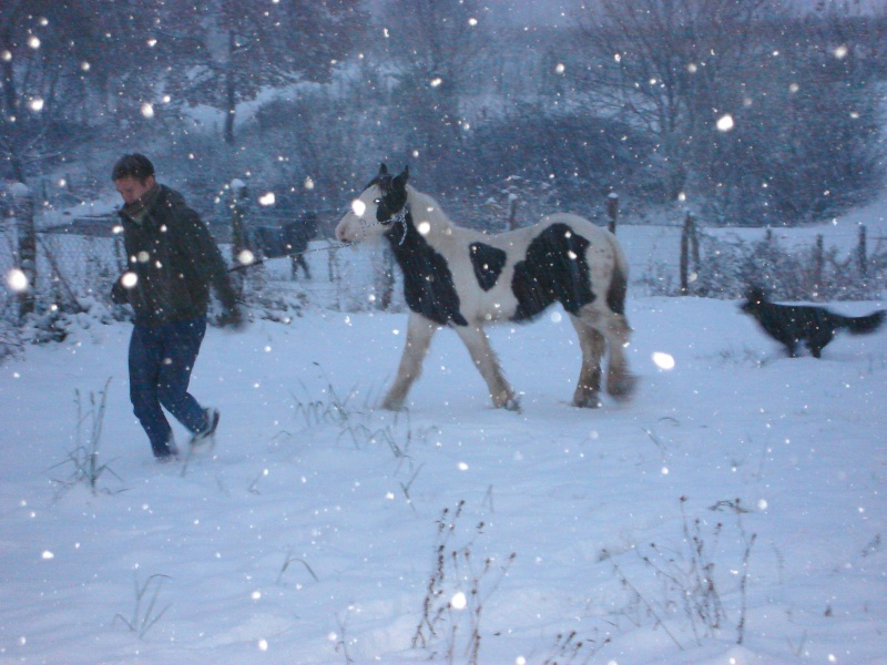 Premières neiges pour Léo! photos pg 3 01-12-20