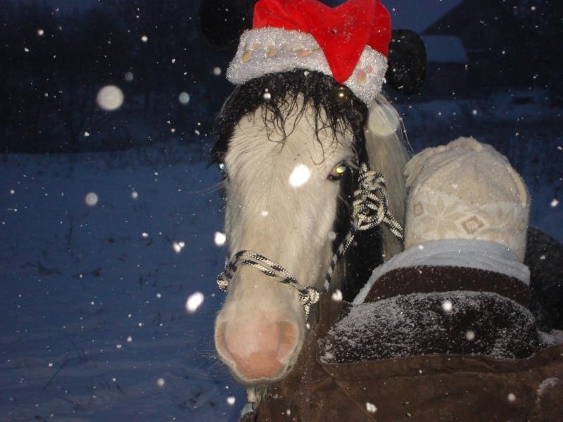 Premières neiges pour Léo! photos pg 3 01-12-25