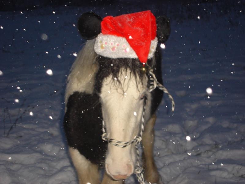 Premières neiges pour Léo! photos pg 3 01-12-26
