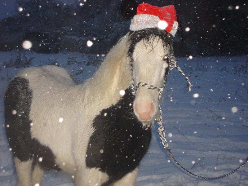 Premières neiges pour Léo! photos pg 3 01-12-27