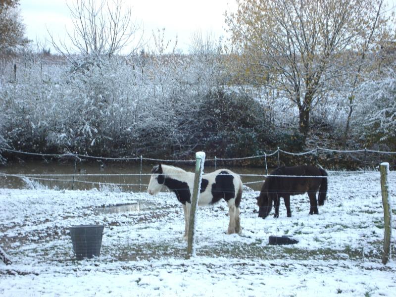 Premières neiges pour Léo! photos pg 3 Premia10