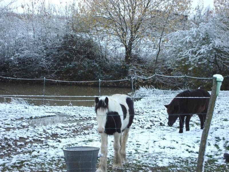 Premières neiges pour Léo! photos pg 3 Premia11