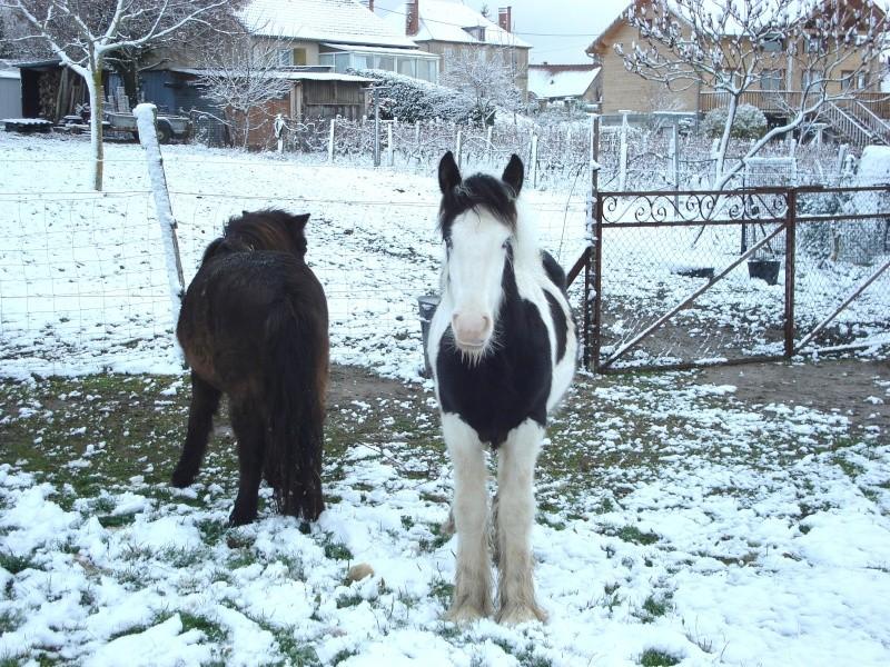 Premières neiges pour Léo! photos pg 3 Premia12