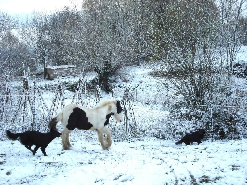 Premières neiges pour Léo! photos pg 3 Premia15