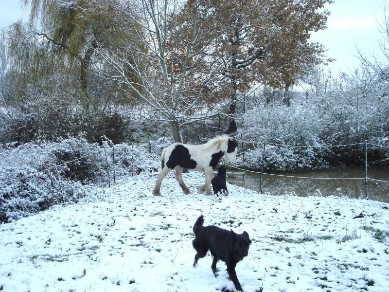 Premières neiges pour Léo! photos pg 3 Premia16