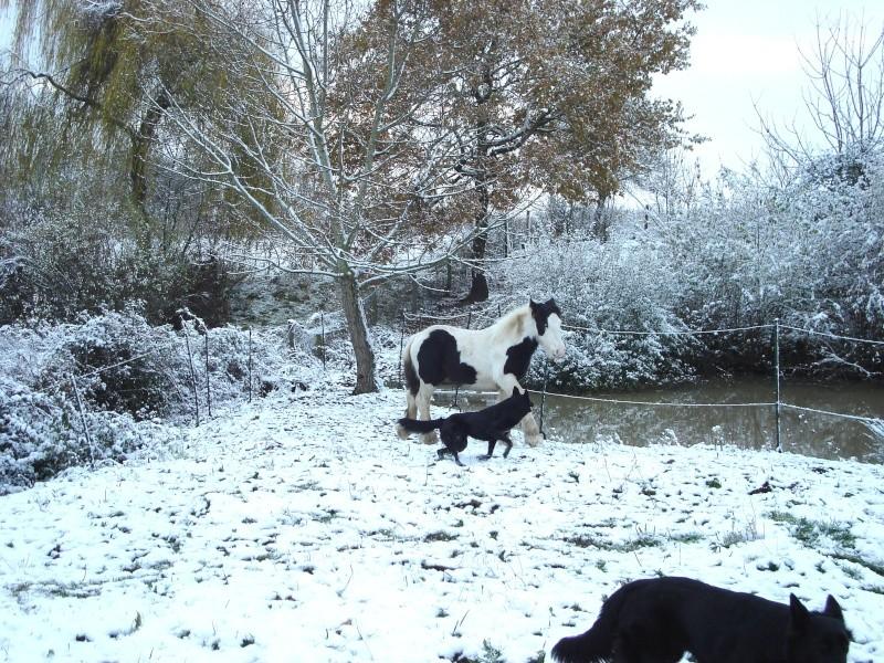 Premières neiges pour Léo! photos pg 3 Premia17