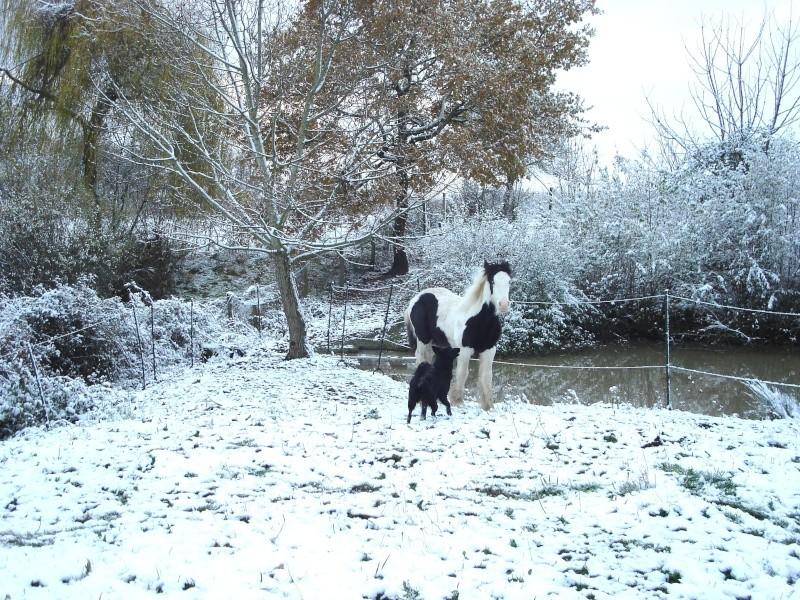 Premières neiges pour Léo! photos pg 3 Premia18