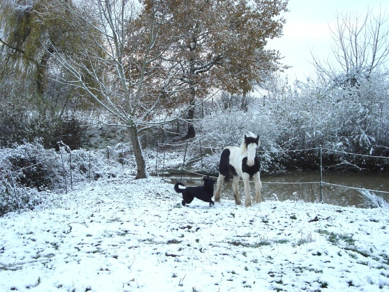 Premières neiges pour Léo! photos pg 3 Premia19