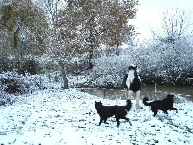 Premières neiges pour Léo! photos pg 3 Premia21