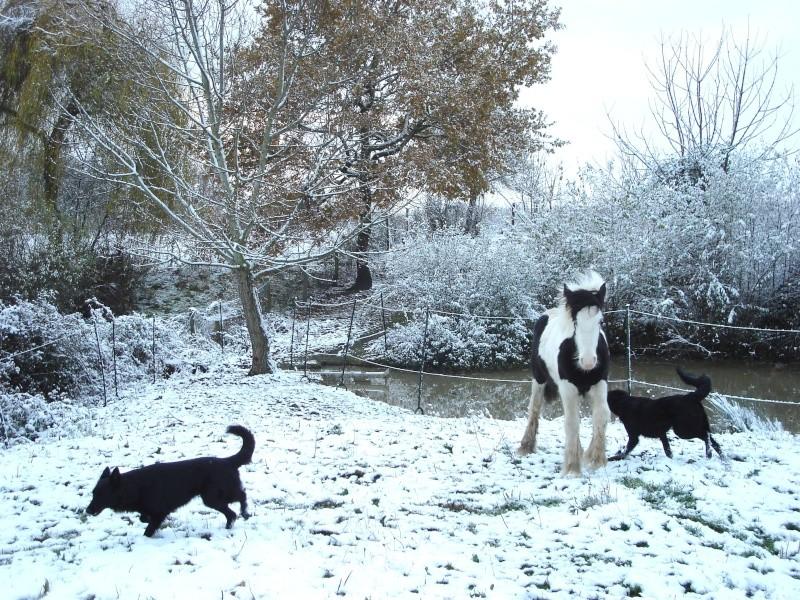 Premières neiges pour Léo! photos pg 3 Premia22