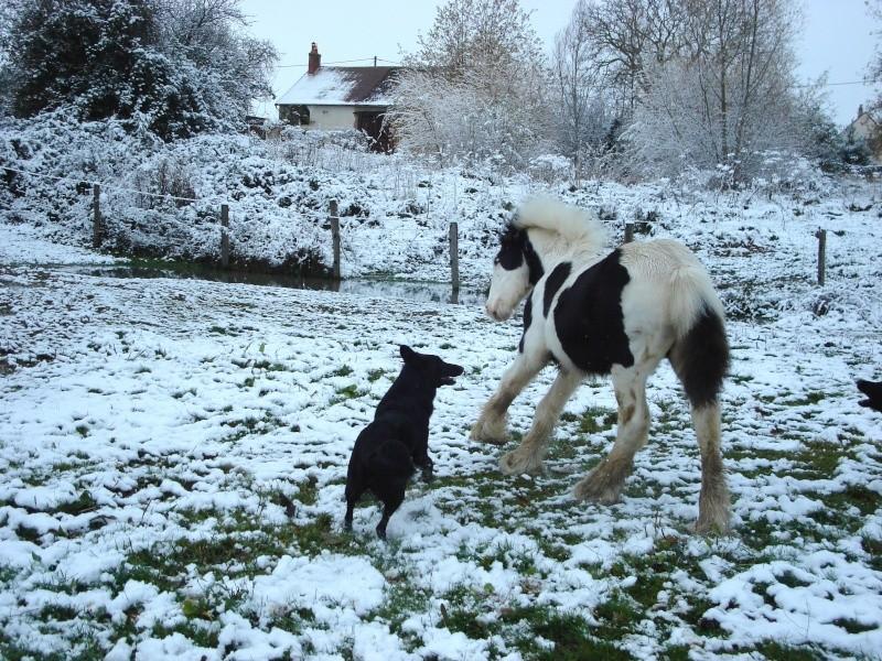 Premières neiges pour Léo! photos pg 3 Premia24