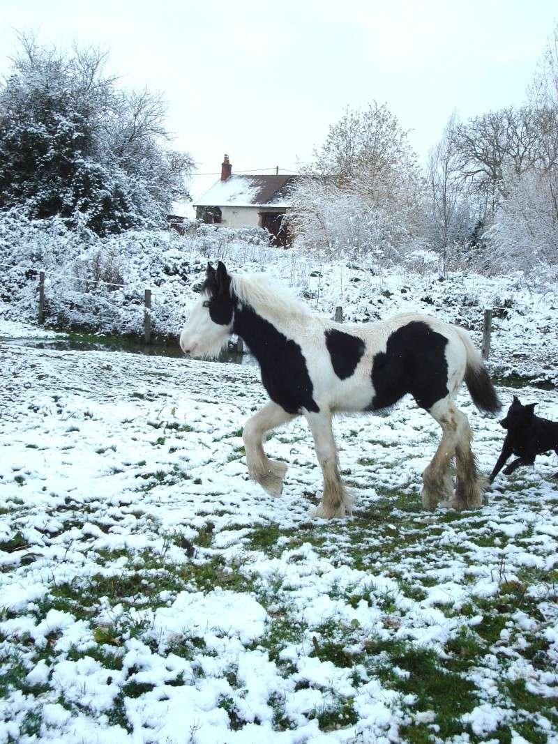 Premières neiges pour Léo! photos pg 3 Premia25