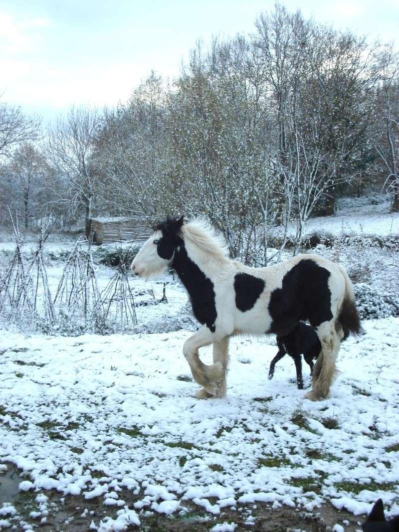 Premières neiges pour Léo! photos pg 3 Premia27