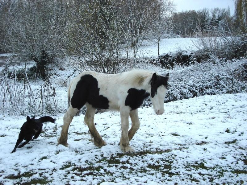 Premières neiges pour Léo! photos pg 3 Premia28