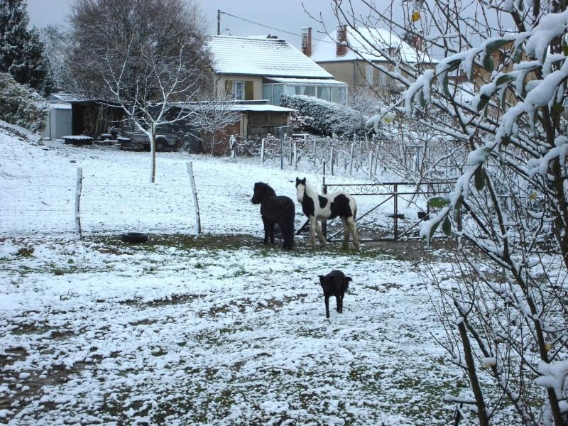 Premières neiges pour Léo! photos pg 3 Premia30