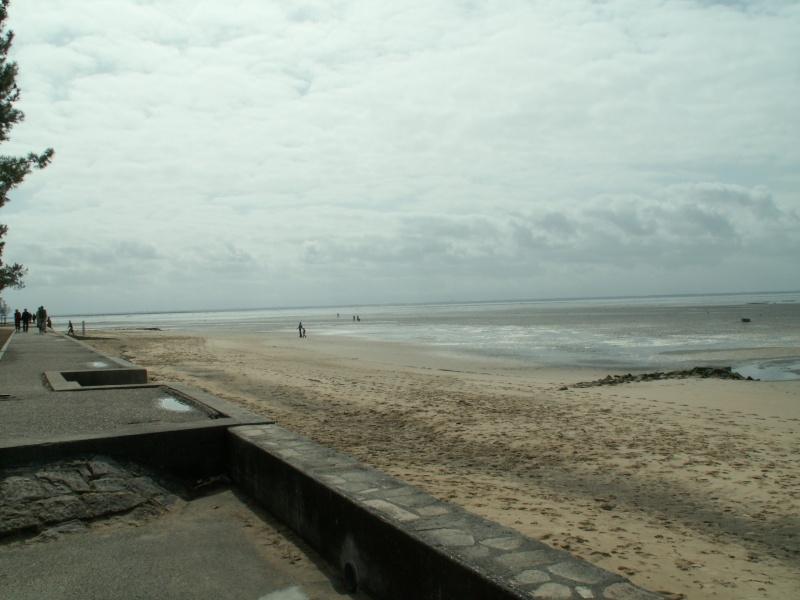 Aller et retour en Amazonie Girondine (Iktus) Pict0036
