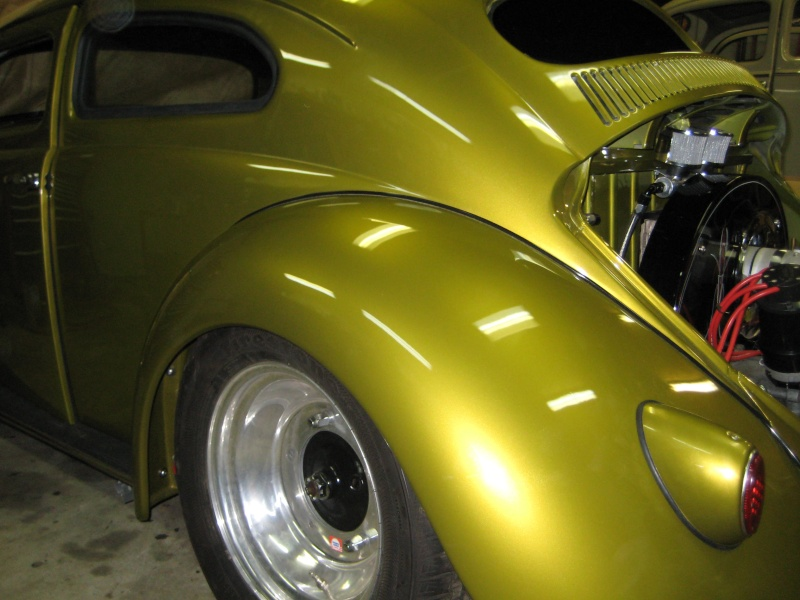 59 chop beetle Chop12