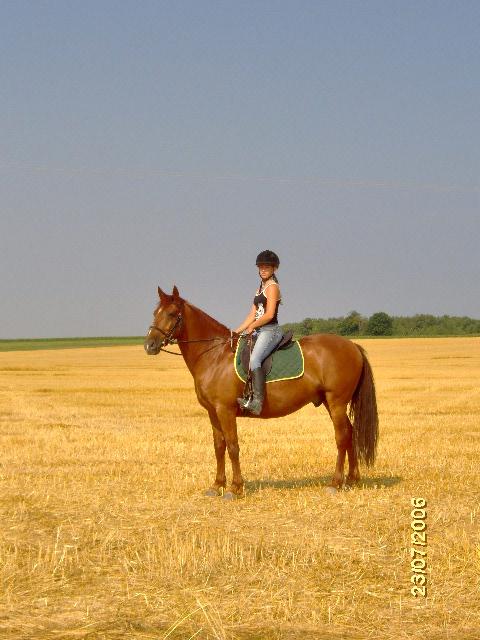 Comment avez vous rencontrer/acheter votre cheval? Moi_et11