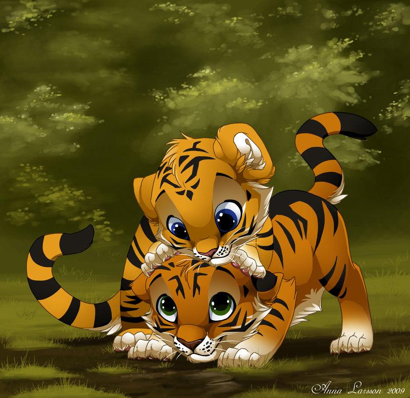 Hana and Mura Tiger_10