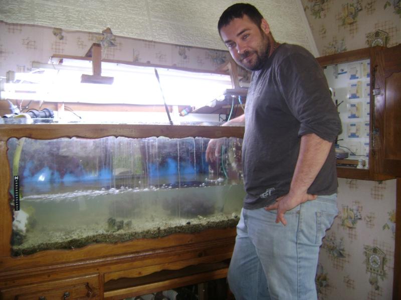 Déménagement d'un bac et de pierres vivantes + poissons lundi 1 juin 2009 Dsc08416