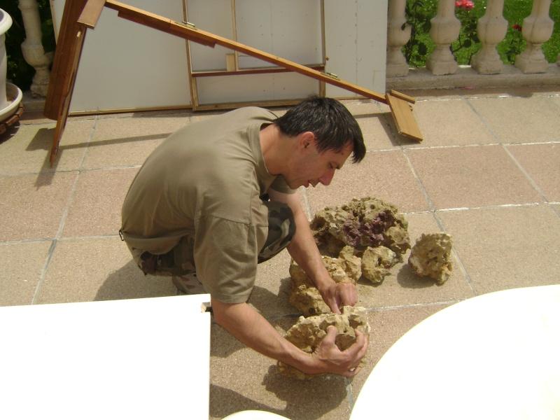 Déménagement d'un bac et de pierres vivantes + poissons lundi 1 juin 2009 Dsc08417
