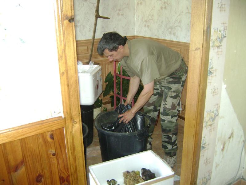 Déménagement d'un bac et de pierres vivantes + poissons lundi 1 juin 2009 Dsc08420