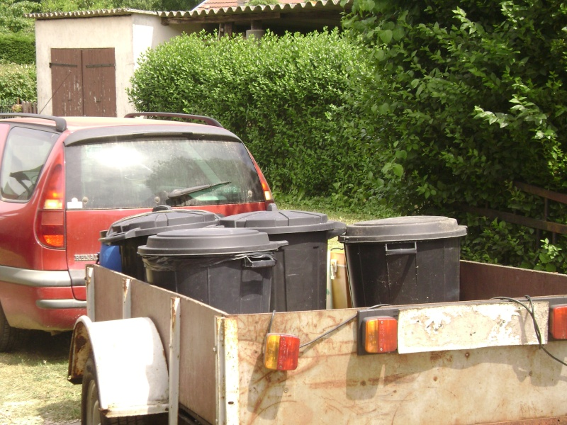 Déménagement d'un bac et de pierres vivantes + poissons lundi 1 juin 2009 Dsc08421