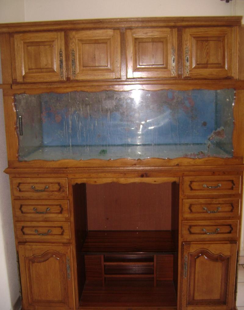Déménagement d'un bac et de pierres vivantes + poissons lundi 1 juin 2009 Dsc08430