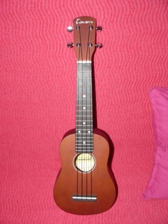 customisation d'un Ukulélé P1010310