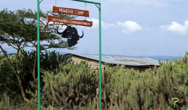 Mbweha camp 02kmbw10