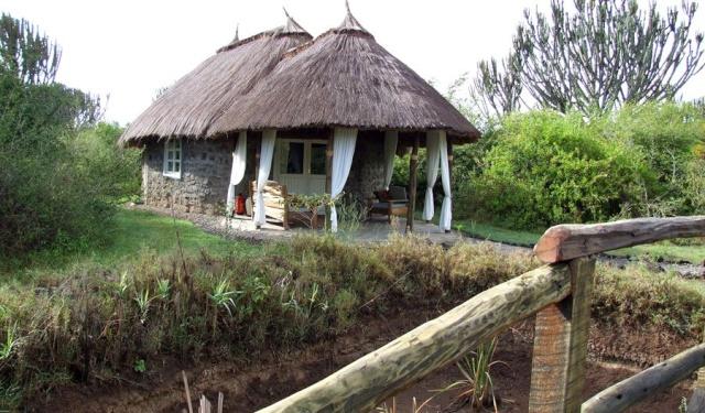 Mbweha camp 42kmbw10