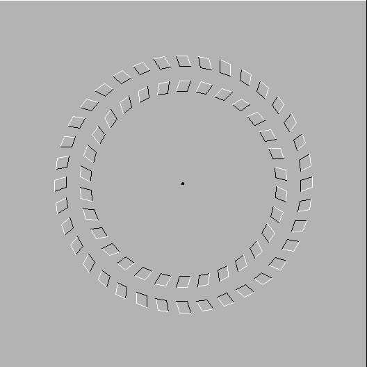 Illusion d'optique Tourne10