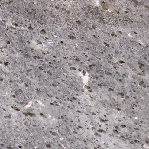 Calcaire à trous Trous-11