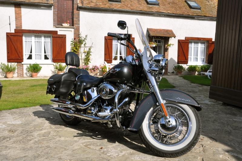 Combien de Softail sur le forum Passion-Harley - Page 3 Dsc_0913