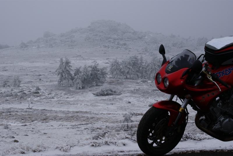 Vos plus belles photos de motos - Page 3 Dsc02219