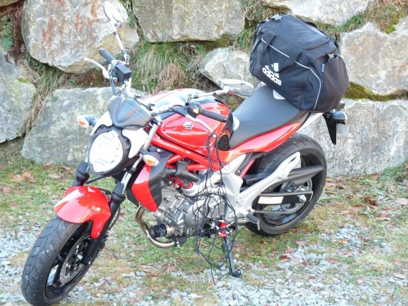 les millevaches 2010 P1050711