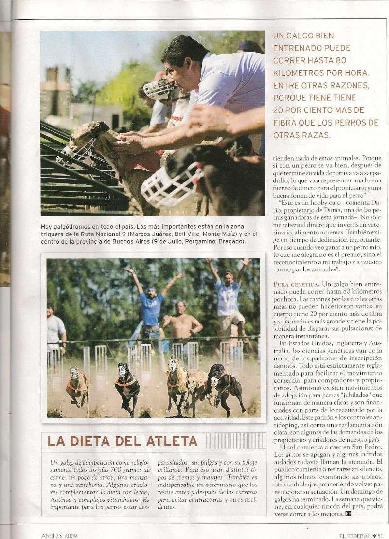 Articulo argentino de galgos Federa13