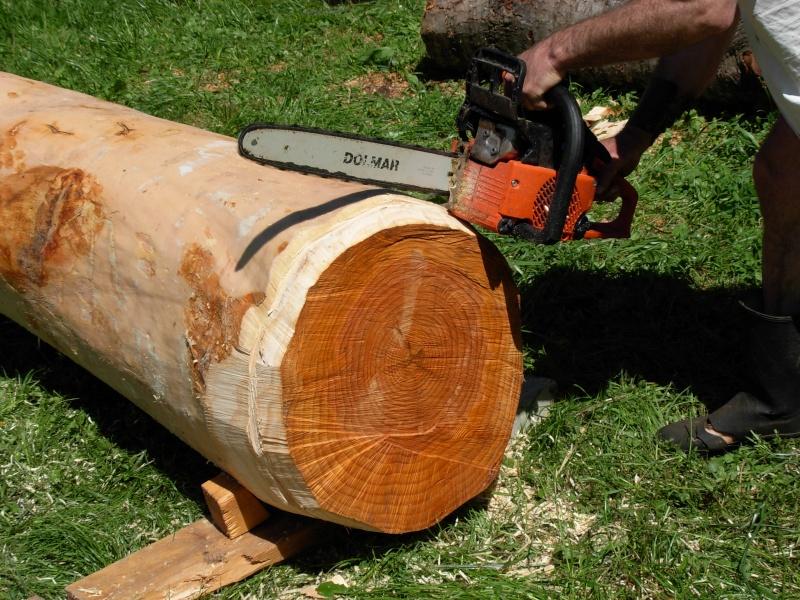 Conseils :Sculpture d'une fontaine dans un tronc d'arbre 2009-013