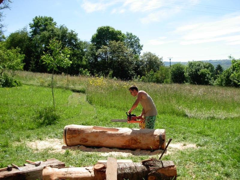 Conseils :Sculpture d'une fontaine dans un tronc d'arbre 2009-015