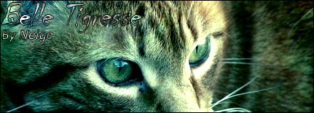 """Il ne faut jamais dire """"Jamais"""" [Belle Tigresse et d'autres s'ils le veulent] Signa_10"""