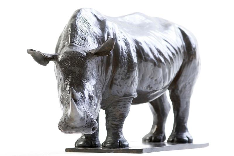 ANIMAL Rhino_17