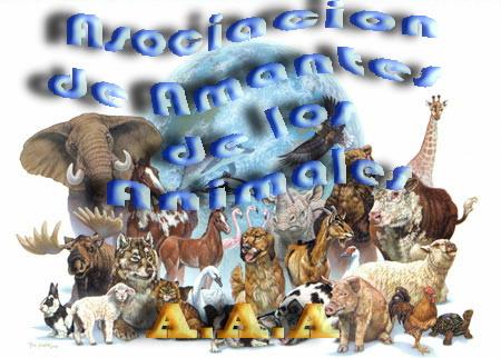 A.A.A. AMANTES DE LOS ANIMALES