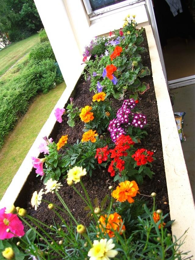 Mon balcon 0606pi17