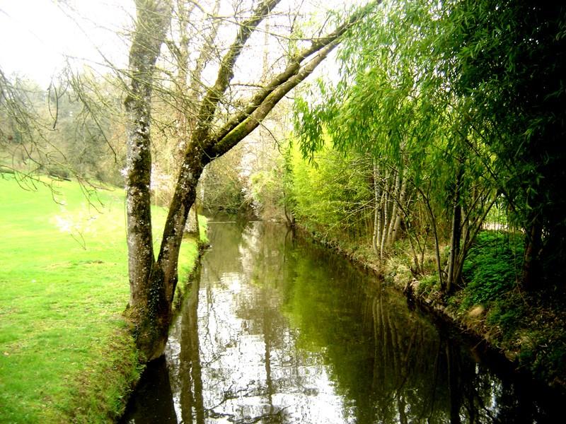 Lub caij paj tawg lawm os lawv aw! ( le retour du printemps/the return of spring)  Dsc08612